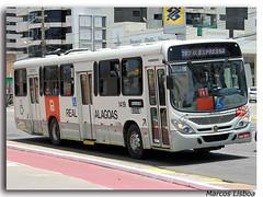 Marcopolo Torino 2007 Volkswagen 17.230 OD Euro V (Marcos A.Lisboa) Tags: حافلة автобус λεωφορείο รถบัส ավտոբուս 鉸接式客車 avtobus аўтобус autobus autobusa autobuses autobusos autocarro autocarros bendy bendies bus buses buso buss bussen bussi busstation buýt coach coaches coletivo coletivos conforto estação executive executivo express expresso fahrzeuginnenraum ibhasi machimbombo marcopolo metropolitano mercedes mercedesbenz microlete multibus obusse omnibus ómnibus omnibusse onibus ônibus otobüs otocarro passeio passeando passenger road rodoviaria rodoviario rodoviária shuttle shuttles sightseeing stasjon terminal tocatoca torino transport transporte transportes travel urbano