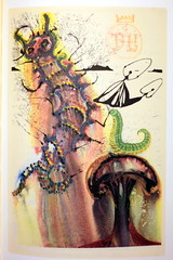 Advice From a Caterpillar (Benn Gunn Baker) Tags: benn gunn baker canon 550d t2i salvador dal illustrates alice wonderland mad hatter childrens lewis carroll