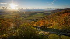 Showing Off Gatineau Park : October 23, 2016 (jpeltzer) Tags: ottawa gatineaupark gatineau fall fallcolours autumn champlainlookout