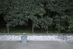 IMG_0091 (Dimitri SoyFeliz) Tags: japan shinjukuku shinjuku tokyo canon eosm eos 22mm 22mmf2 minimal minimalism minimalist newtopographics desolate outdoors hiragana