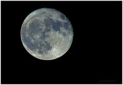Hunter's Moon - Super Moon (J Michael Hamon) Tags: moon luna lune fullmoon huntersmoon supermoon astronomy heavens sky night blackbackground outdoor nature hamon nikon d3200 nikkor 55300mm orb orbit satellite