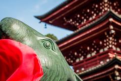 Photobomb Rabbit (campra) Tags: japan hirosaki  aomori  saishoin temple buddhist pagoda rabbit bib red closeup photobomb