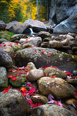 Grafton Notch Fall Scene (BenjaminMWilliamson) Tags: autumn bearriver colorful colors fall fallen foliage gorge graftonnotch image landscape leaves me maine natural nature newengland newry photography prints red river rocks rocky scenery scenic statepark stream usa waterfall