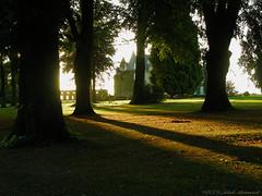 La Hulpe (Natali Antonovich) Tags: lahulpe park autumn pensiveautumn nature belgium belgique belgie architecture style lifestyle shadows tree landscapearchitecture castle light