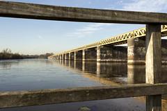 (Evelien Gerrits) Tags: moerputten moerputtenbrug denbosch shertogenbosch brug brigde water sky lucht reflectie reflection canon canon600d canoneos600d gerrits eveliengerrits