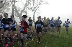 DSC_3443 (Dave Pinnington Photography) Tags: european womens xc trials sefton park liverpool 261116 photos by dave pinnington
