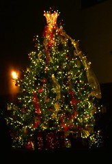 2016 Christmas Tree (en tee gee) Tags: christmas tree lights night huntington ny