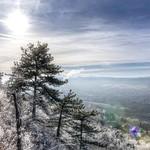Sparkling winter world thumbnail