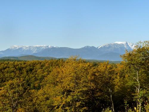 Herbst im Rosaliengebirge