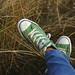 Grüne Ghucks im Gras