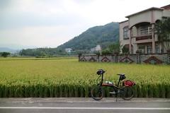 vs  P (nk@flickr) Tags: taiwan hsinchu 20161105 cycling   guanxi   canonefm22mmf2stm