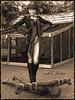 blackslave7sep (louferrox007) Tags: femdom evilwoman bullwhipping whipping bdsm 3d renderings mistress herrin sklave slave slavery