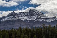 K56A7423 (paulaf55) Tags: canada canadianrockies peytolake