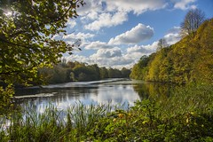 Colwick Hall Lake.... (klythawk) Tags: autumn trees bluesky clouds reflections water sunlight sunstar blue green yellow brown black white nikon d610 24120mm colwickhalllake colwickpark nottingham klythawk