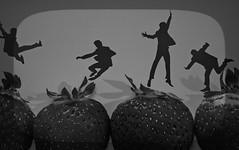 ..Nothing is real...Strawberry Fields Forever... (Hanna Tor) Tags: beatles strawberry macro lyrics song macromonday beatlesbeetles row