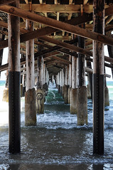 One-eyed (Luck-y) Tags: beach plage spiaggia california newport newportbeach usa america west coast westcoast pier pont jete wood bois legno ocean pacifique pacific pacifico nikon d90 nikond90 water saltwater structure enfilade
