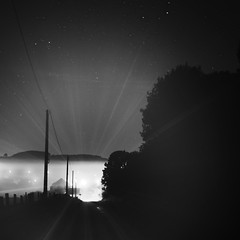 Shining Fog (Lux Obscura) Tags: foggy public lights trees lines stars hdr 50mm road hill electric poles dark