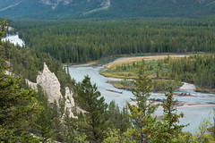 Hoodoos (Heather_K_Jones) Tags: alberta banff banffhoodoos banffnationalpark canadianrockies jaspernationalpark rockymountains canada forest hoodoos landscape mountains nature rockies scenery scenic tourism touristattraction travel trees woods