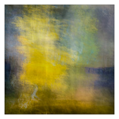 Yellow Tree, Blue Hills (gerainte1) Tags: trees colour autumn icm