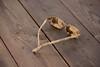 Oops! (Yvonne L Sweden) Tags: november leriga dirty glasögon messy sweden roadtrip hjälmaredocka smutsiga mud glasses 3662016