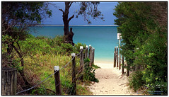 Path to Paradise... (juliewilliams11) Tags: outdoor photoborder serene water beach sand path fence post blue newsouthwales australia