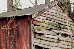 shed (Hayseed52) Tags: shed red faded boards tinroof decayed