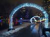 PC110909 (mina_371001) Tags: canada photographywork olympusomdem10 illumination beautiful lafargelake winter outside coquitlam