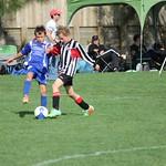 Kapiti Tournament - 11th Grade - 6