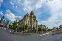 The Liver buildings (18mm & Other Stuff) Tags: uk england liverpool canon fisheye gb merseyside samyang