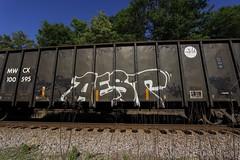 Aest2 (Revise_D) Tags: railroad graffiti trains graff tagging freight revised trainart bsgk benching aest2 fr8heaven revisedesigns revisedesign benchingsteelgiants freightlyfe