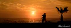Reflections  by the sea (A. Alexandre) Tags: ocean sunset sea man tree beach del sunrise reflecting mar post coconut palm palmtree pacifico coqueiro oceano vina reflexão