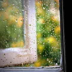 Old windows, new rain (Cristian Ştefănescu) Tags: summer window wet rain fav50 sommer fenster regen vara fav25 ploaie fav100 fereastra umed