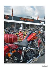 Down at the Shop.... (Harleynik Rides Again.) Tags: bike nikon df flames harleydavidson motorcycle nik hd bikers shd wideglide harleynik
