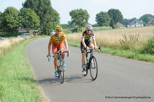 Geel Oosterlo  (206)