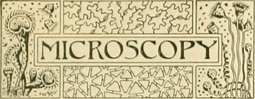 """Image from page 28 of """"Science-gossip"""" (1894)"""