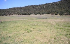Lot 308 Giants Creek Rd, Sandy Hollow NSW