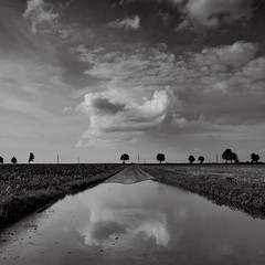 puddle (Andrea Schuh) Tags: bw puddle landscapes