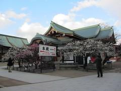 KitanoTenmangu-Shrine in Kyoto,Japan (shanti-from-Japan) Tags: japan kyoto    plumgarden kitanotenmangushrine
