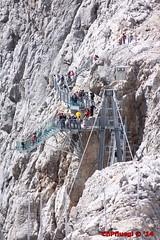 IMG_0088 (Pfluegl) Tags: wallpaper berg christian alpen brücke dachstein steiermark hintergrund pfluegl ramsau höchster kalkalpen öberösterreich hängeseilbrücke pflügl