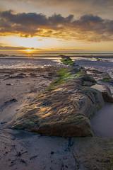 Hauxley Beach (Callaghan69) Tags: uk morning sea sky seascape seaweed clouds sunrise landscape dawn coast seaside sand scenery rocks scenic northumberland northsea daybreak northeastengland d7100 lowhauxley tokina1116 nikond7100 hauxleybeach