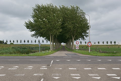 Beemster (Bart van Damme) Tags: dykes thenetherlands canals fields roads agriculture beemster settlements manmadelandscape northholland sociallandscape newtopographics dutchpolders dutchpolderlandscape bartvandammephotography emailinfostudiovandammecom studiovandammephotography renaissanceplanningprinciples