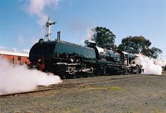 Frame 13.jpg (njcull) Tags: film 35mm kodak australia steam kingston locomotive canberra railwaymuseum canonrebel2000 australiancapitalterritory c41 portra400 kodakportra400 6029 ef1740mmf4 beyergarratt canberrarailwaymuseum