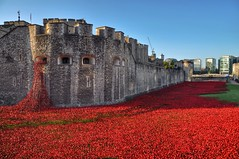 Installation (explored) (Nige H (Thanks for 25m views)) Tags: uk england london installation poppies ww1 toweroflondon commemoration seaofred londonpoppies bloodsweptlands