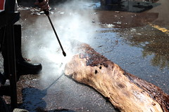 Pressure washing live edge wood to be treated.
