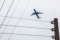 Fly by wire (Hkan Dahlstrm) Tags: copenhagen denmark dragr airport aircraft aeroporto dk flughafen f56 uncropped danmark dinamarca danemark copenhague 2014 luchthaven aroport danimarca kpenhamn flygplats ef200mmf28lusm regionhovedstaden canoneos5dmarkii sek 10130082014150635