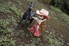Make sure the horse is under your cotrol. (cute-little-dolls) Tags: horse cute toy doll dal ornament cowgirl lizbel