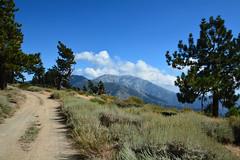 Mt Baldy View - Blue Ridge, San Gabriel Mountains (simbajak) Tags: california road blue vacation mountains gabriel wrightwood forest nikon san angeles ridge national d7100 nf3n06