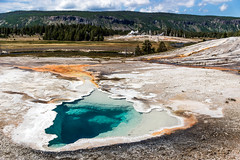 Thermal Valley (rowjimmy76) Tags: nature outdoors oldfaithful yellowstonenationalpark wyoming wilderness geyser geothermal