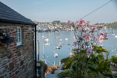 Polruan, Cornwall (Nadialeesi) Tags: uk trip travel pink flowers light sea summer sky sun sunlight nature water colors beauty canon boats eos harbor seaside cornwall shadows dof naturallight september 7d pinkflowers 2014 polruan eos7d canoneos7d