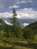 007 - la discesa a Comboé (TFRARUG) Tags: alps alpine alpi beccadinona emilius